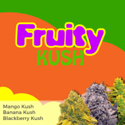 Fruity Kush Mixed Seeds