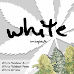 White Seeds Mixpack