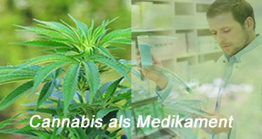 Cannabis als Medikament
