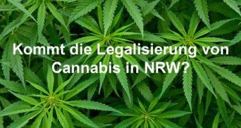 Canabis Legalisierung