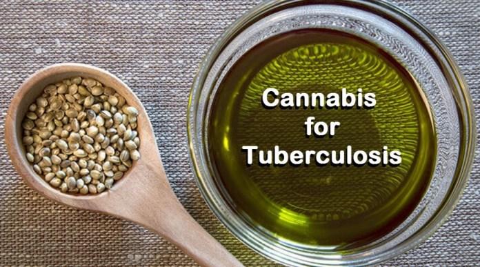 CANNABIS AND TUBERCULOSIS