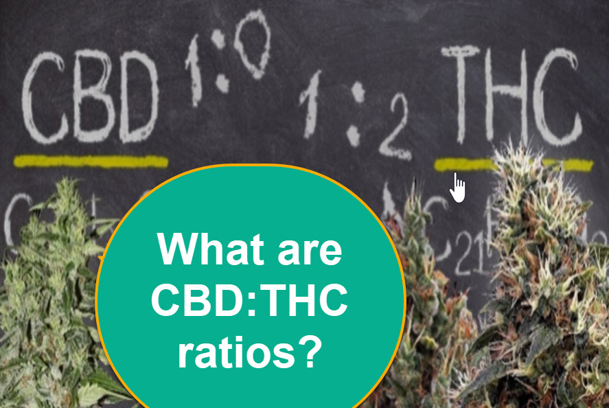 WHAT IS BEST RATIO FOR THC TO CBD