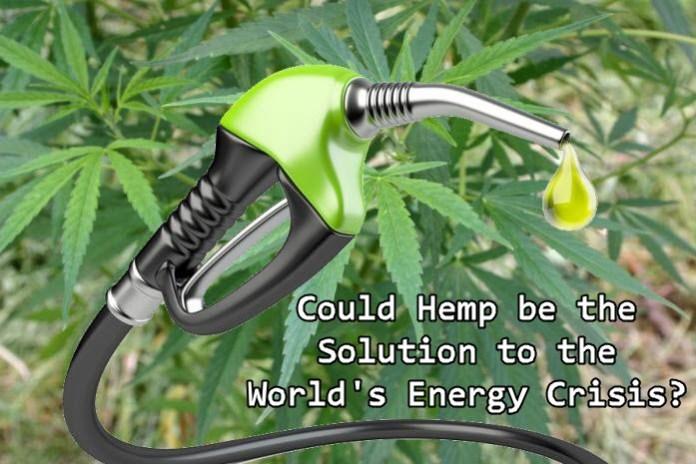 HEMP FUEL AND ENERGY OPTIONS