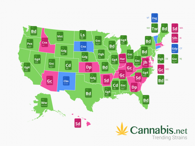 POPULAR STRAINS IN THE USA