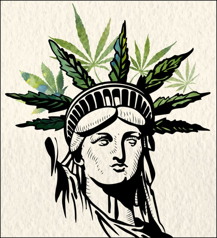 NEW YORK MARIJUANA KINGPIN CAPITAL