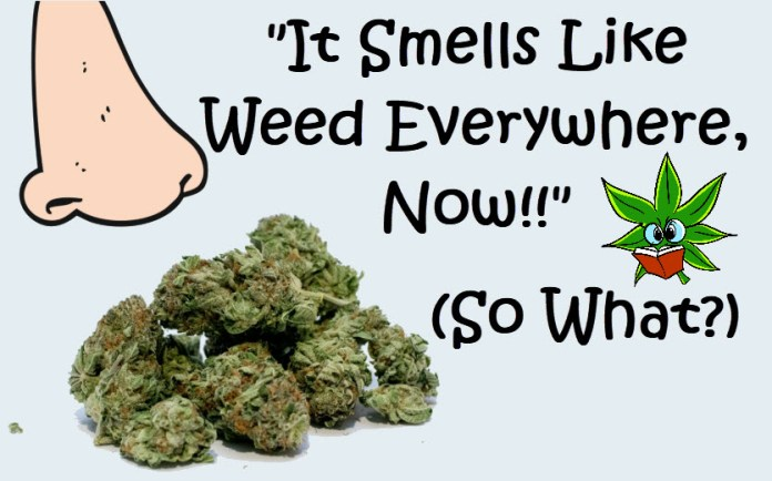 SMELLY WEED SMELL EVERYWHERE NOW