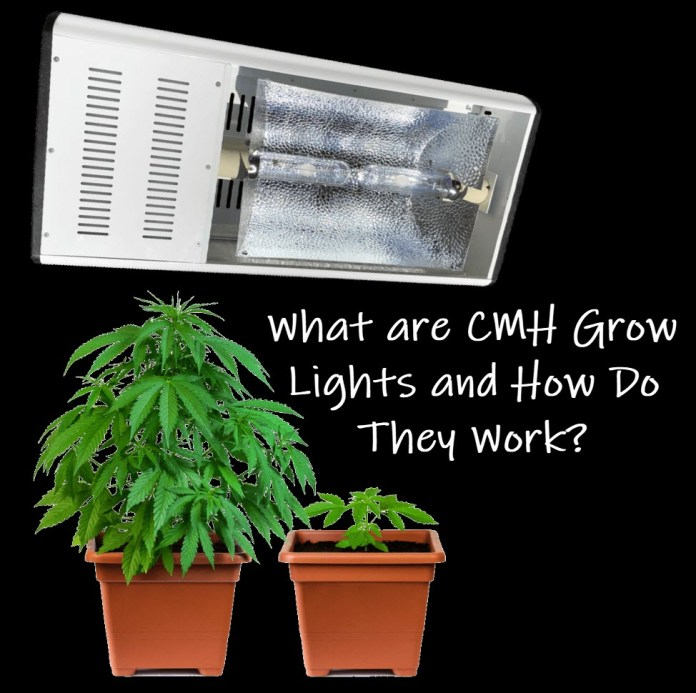 WHAT ARE CMH GROW LIGHTS AND HOW DO THEY WORK