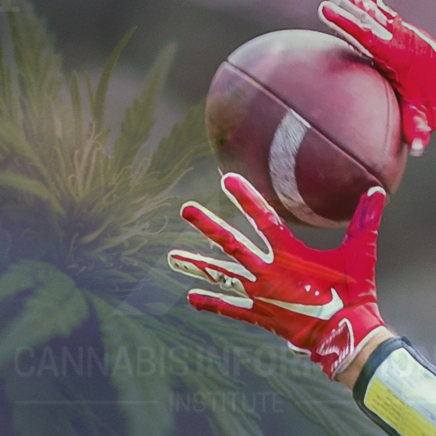 Do professional athletes smoke weed? do athletes use cannabis? do professional athletes smoke marijuana, CBD and professional athletes,do athletes use cbd? athletes and cbd oil, hemp cbd for athletes, cbd sports, cbd for pain, cbd for knee injuries, cbd for back pain,what is the endocannabinoid system? endocannabinoid system in humans,