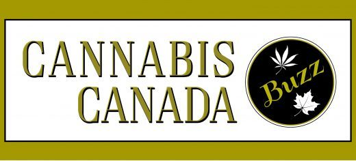 cannabis canada, cannabis canada buzz, cancanbuzz, cannabis in cannabis news, news about cannabis, cannabis information and trends, cannabis trends 2020, cannabis business, cannabis marketing
