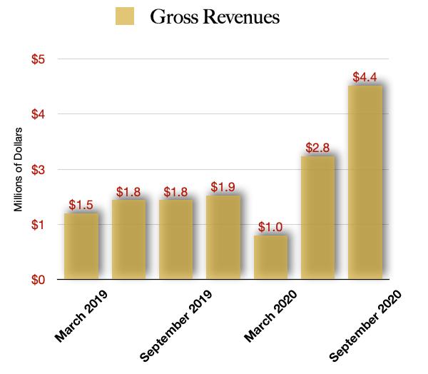 IM Cannabis Company $IMCC revenue