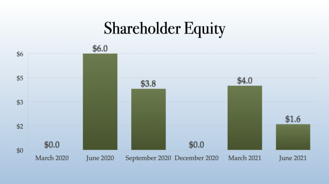 Plus Products Shareholder Equity