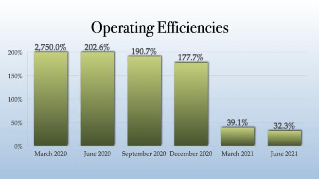 Gaby Inc Operating Efficiencies