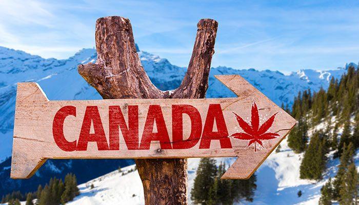 , Cannabis around the world 2017, ISMOKE