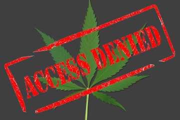 marketing cannabis