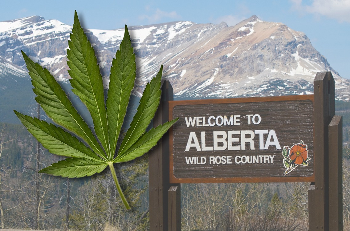 BC Bud is losing out to Alberta thumbnail