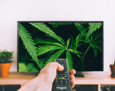 LIVE STREAMS AND SHOWS TO WATCH WHILE CELEBRATING 420 AT HOME