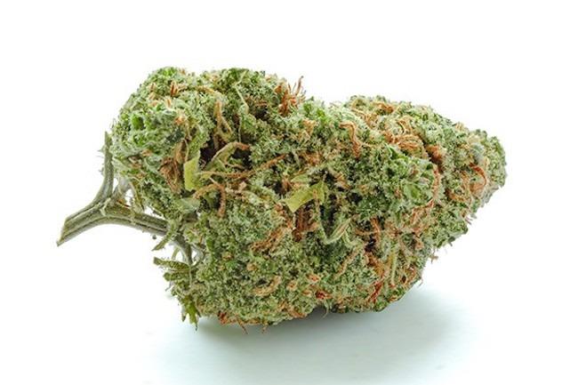 Green Crack strain