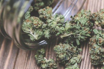 What happens to your weed when it gets old?