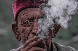 The Ultimate Stoner's Guide to India (Travel Guide)