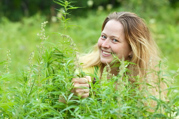 A smiling woman in a field of cannabis plants.