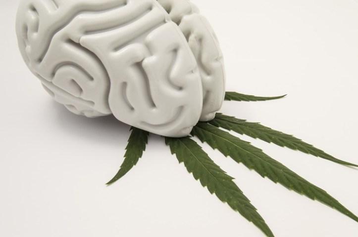 brain-marijuana-istock-2019