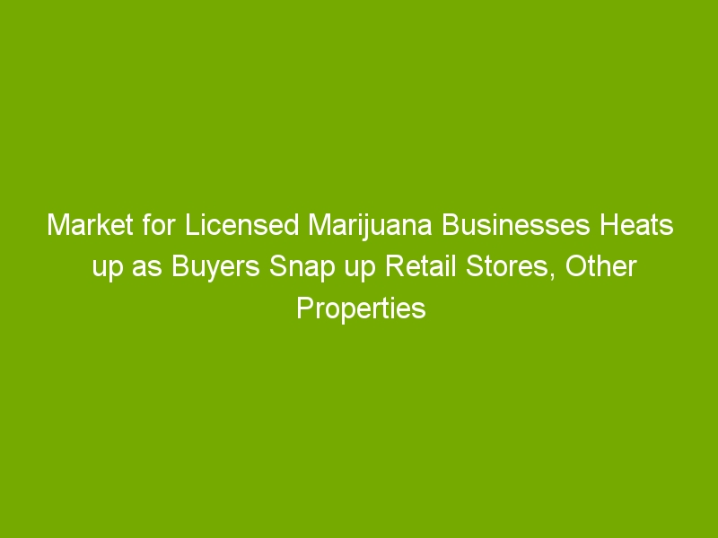 Market for Licensed Marijuana Businesses Heats up as Buyers Snap up Retail Stores, Other Properties