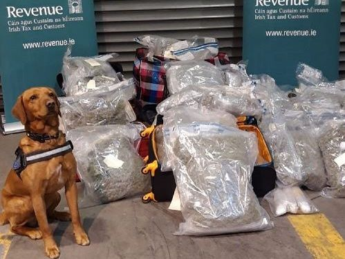 Drug-sniffing dog discovers nearly $2 million worth of cannabis and edibles in Dublin port
