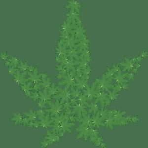 Cannabis digital leaf