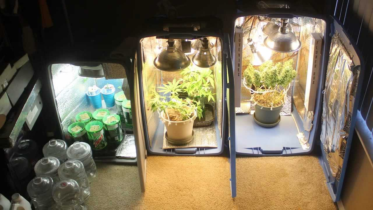 How I Made My Grow Box For Vegging And Flowering LV