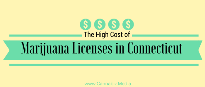 The High Cost of Marijuana Licenses in Connecticut