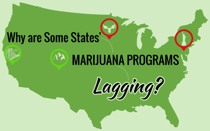 Why are Some States' Marijuana Programs Lagging?