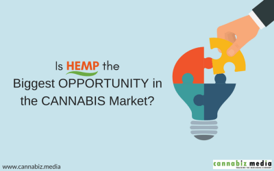Is Hemp the Biggest Opportunity in the Cannabis Market?
