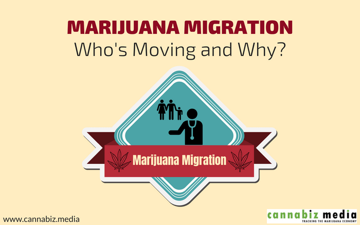 Marijuana Migration – Who's Moving and Why?