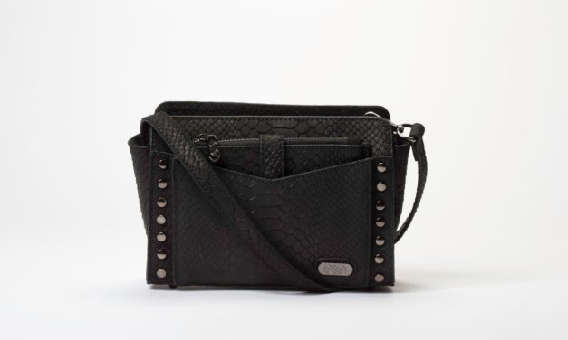 AnnaBís Handbags