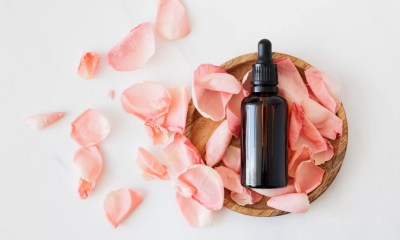 cbd oil tincture bottle on rose petals