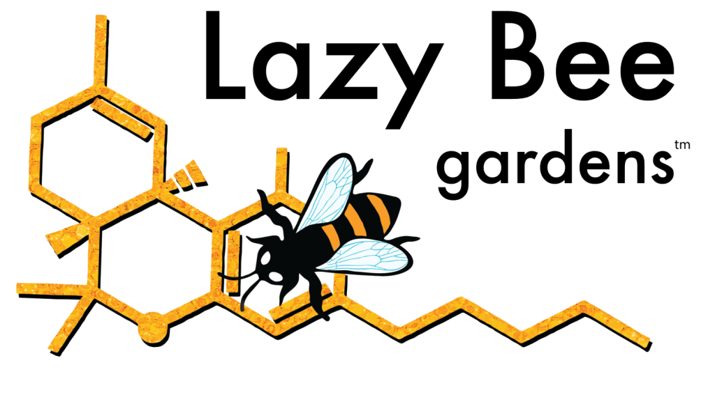 Lazy Bee Logo 2