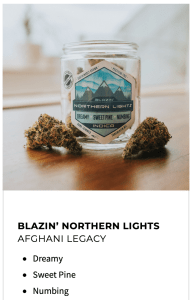 Northern Lights by Trail Blazin