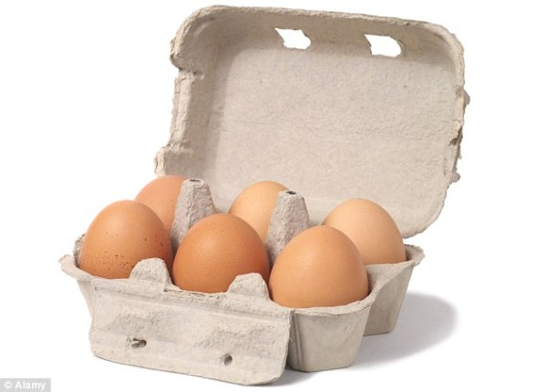 Cannich Stores : Medium Eggs