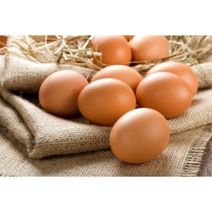 Cannich Stores : Large Free Range Eggs