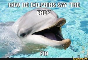 dolphin pun