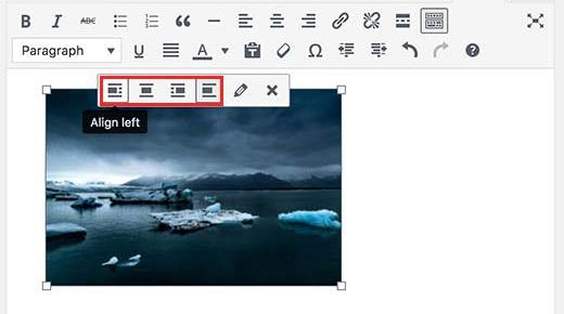 Screenshot showing image alignment buttons