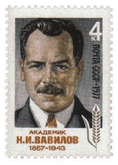 Postage Stamp of Vavilov. Steve Strummer - Own work USSR, 1977