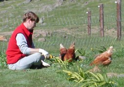 6.gardening
