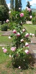 36-giardino-spagnolo