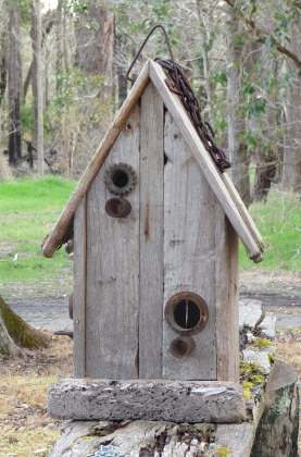 4.Swallows Welcome