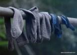 Allagash Socks