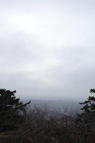 靄の中のビクトリア