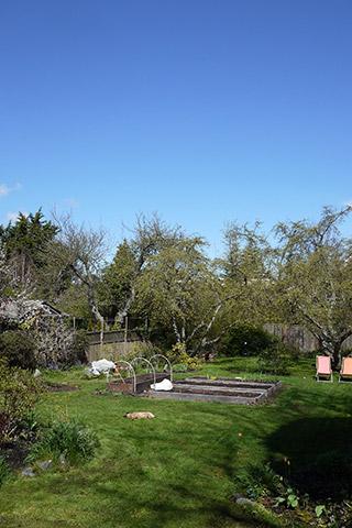 日曜日の庭