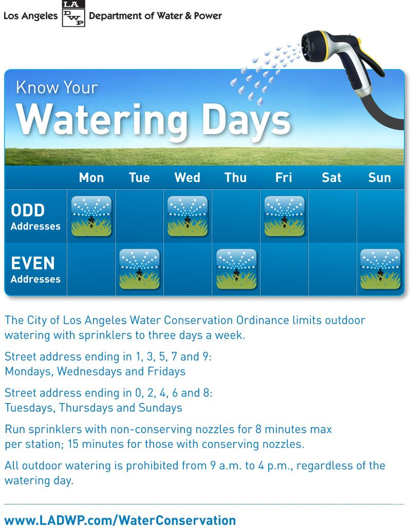 Watering-Days-Flyer-English