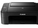 Canon Pixma TS3166 Drivers Download